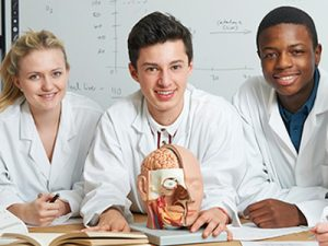 Anatomy & Physiology - MyFunScience.com