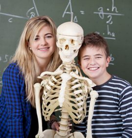 Young-Scientist-Anatomy-and-Physiology-MyFunScience