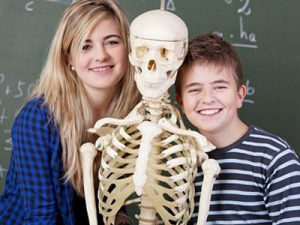 Young Scientist Anatomy & Physiology - MyFunScience.com