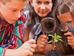 Young Scientist Botany - MyFunScience.com